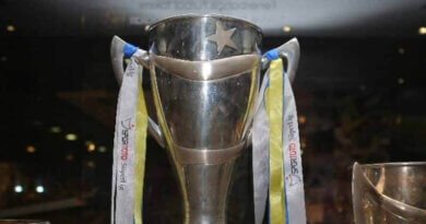 2010-2011 Süper Lig Kupası